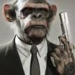 程序猿 必备